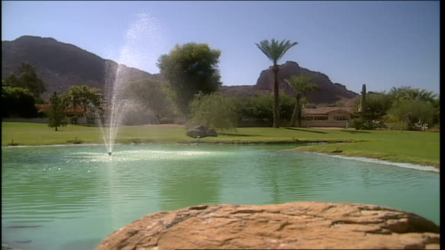 wide shot of green man made lake with fountain in middle in phoenix arizona - natural land state stock videos & royalty-free footage
