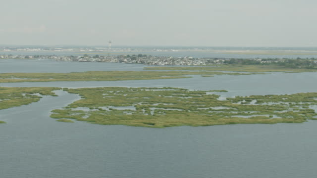 Wide shot of houses in the Broad Channel neighborhood of Queens behind a marsh