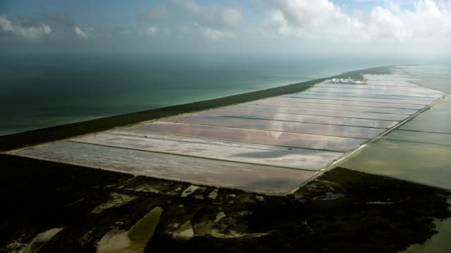 wide shot of mexican salt lagoons - yucatan peninsula stock videos and b-roll footage