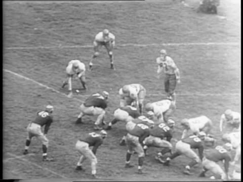 wide shot of ohio state player who runs the ball and is stopped short of a touchdown / montage of game footage featuring players bob brugge leslie... - joe pass stock videos and b-roll footage