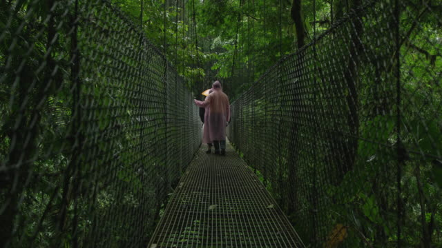 wide shot of people climbing rain forest hanging bridge in rain / arenal, costa rica - costa rica stock videos & royalty-free footage