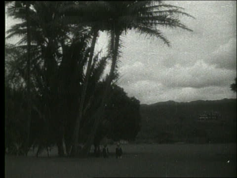 vídeos de stock e filmes b-roll de b/w wide shot of people in park / 1919 hawaii / no sound - 1919