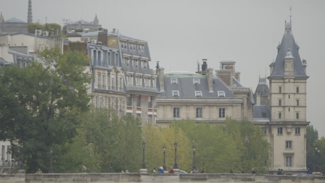 Wide shot of people on Paris' Pont Neuf taking pictures of surrounding buildings, France.