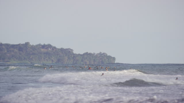 """Wide shot of people swimming in ocean waves / Playa Hernadez, Punta Arenas, """