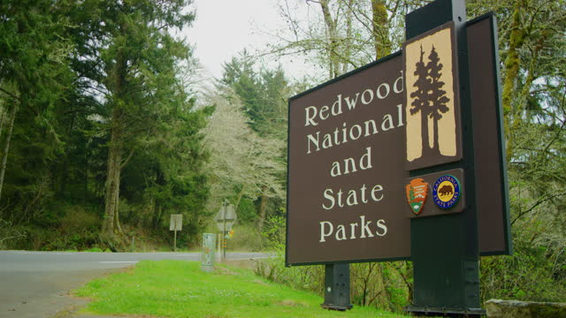 stockvideo's en b-roll-footage met wide shot of redwood national and state park sign - sequoiafamilie