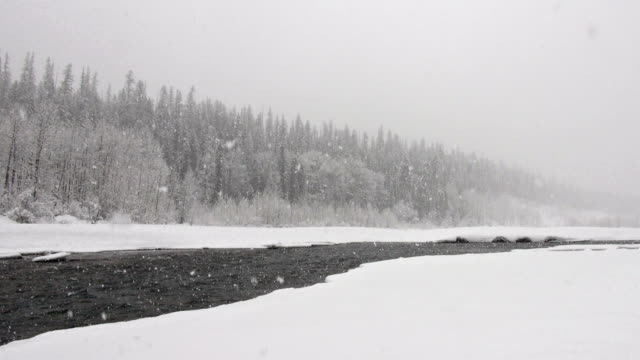 wide shot of river and snow covered trees along river bank in mountains during heavy puffy snowflake snow storm. - glacier national park us stock videos and b-roll footage