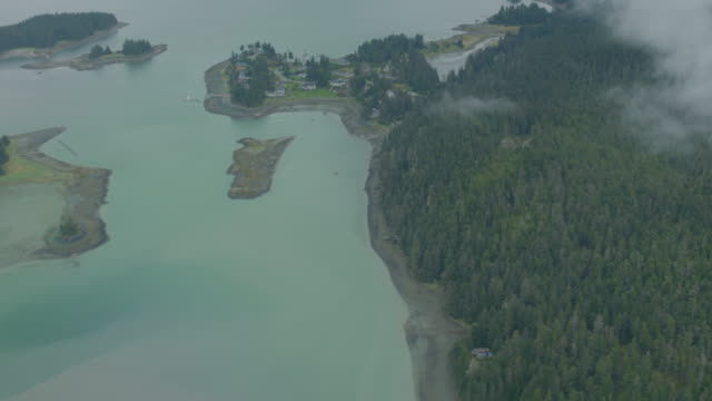 wide shot of small forested islands in alaska - juneau stock videos and b-roll footage