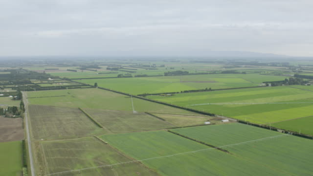wide shot of the fields in canterbury plains - irrigation equipment stock videos & royalty-free footage