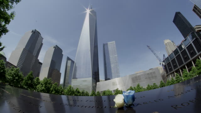Wide shot of the Freedom Tower in New Tork city with additional building and roses..
