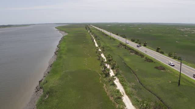 wide shot of the mcqueens island historic trail next to the south channel savannah river - dirt track stock videos & royalty-free footage