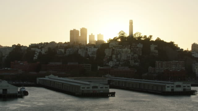 wide shot of the telegraph hill at sunset - コイトタワー点の映像素材/bロール