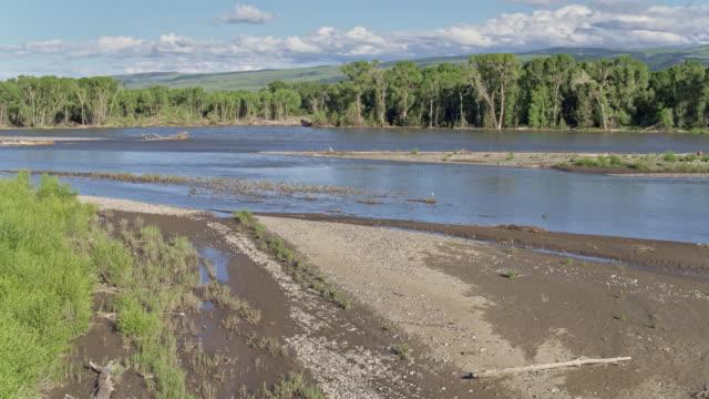 wide shot of the yellowstone river - riva del fiume video stock e b–roll