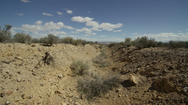 wide shot of tumbleweeds at nevada test site - massenvernichtungswaffe stock-videos und b-roll-filmmaterial