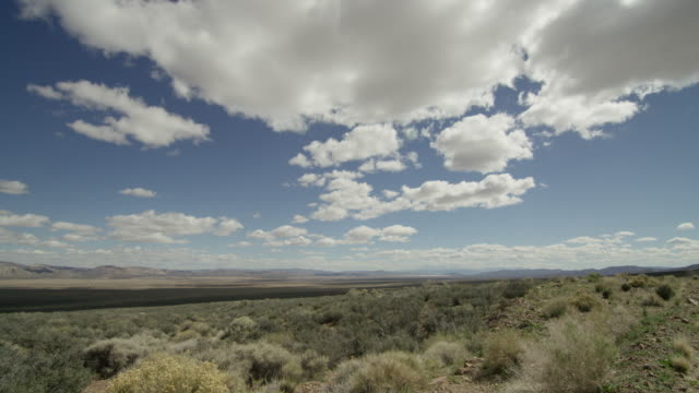 wide shot of tumbleweeds at nevada test site - 大量破壊兵器点の映像素材/bロール