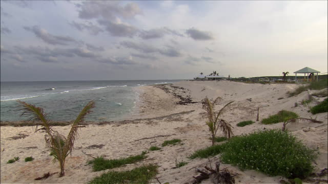 wide shot of waves lapping up on beach / pan across shoreline / abaco, bahamas - bahamas stock videos & royalty-free footage