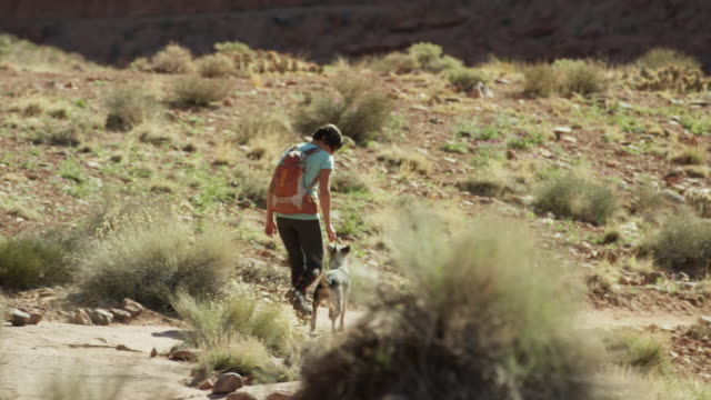 wide shot of woman hiker walking with dog / moab, utah, united states - dissolvenza in chiusura video stock e b–roll