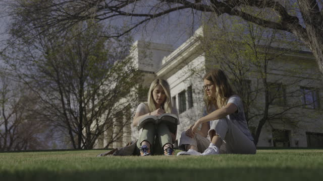 wide shot of women sitting in grass studying textbook at college / provo, utah, united states - provo stock videos & royalty-free footage