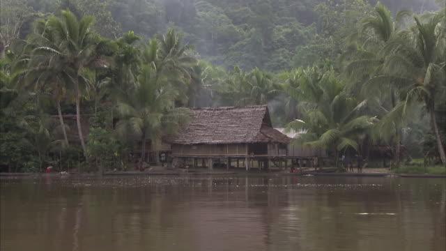 wide shot of wooden hut beside the sepik river - stilt house stock videos & royalty-free footage