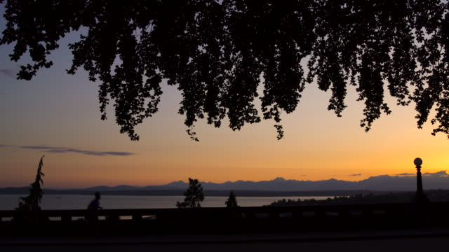 wide shot of young man running after sunset - puget sound stock videos & royalty-free footage