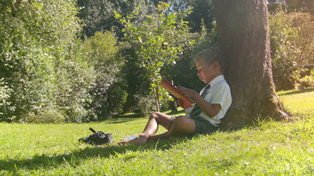 hd: wide shot of young school boy reading outside - school uniform stock videos and b-roll footage