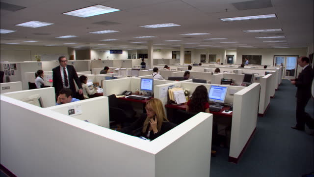 vidéos et rushes de wide shot office floor full of office workers working in cubicles / los angeles, california - bureau ameublement