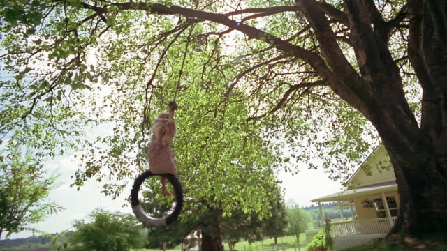 vídeos de stock e filmes b-roll de wide shot one girl pushing another on tire swing near house / des moines, king county, washington, usa - fazer um favor