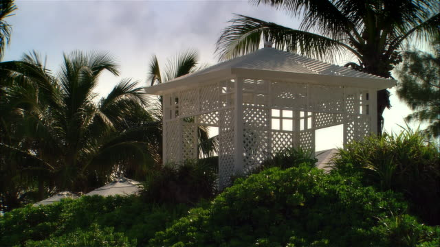 stockvideo's en b-roll-footage met wide shot palm trees blowing in wind near white gazebo/ harbor island, bahamas - gazebo