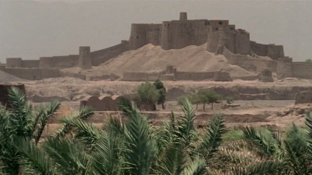 1999 wide shot palm trees growing in desert near ancient citadel of bam/ bam, kerman province, iran - 6th century bc stock videos and b-roll footage