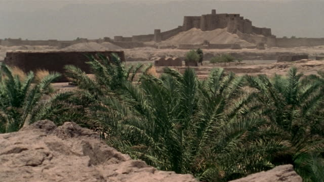 1999 wide shot palm trees growing in desert near ancient citadel of bam/ bam, kerman province, iran - fortress stock videos and b-roll footage