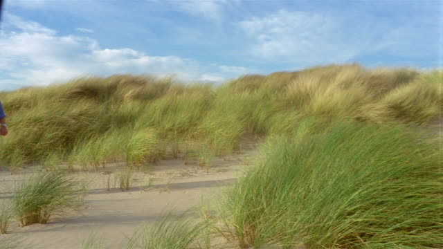 wide shot pan across grassy sand dunes to man walking and talking on cell phone on windy day / sitting down - 2005 stock videos & royalty-free footage
