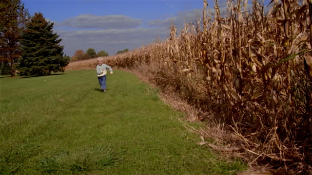 Wide shot pan boy running next to cornfield/ Solebury, Pennsylvania
