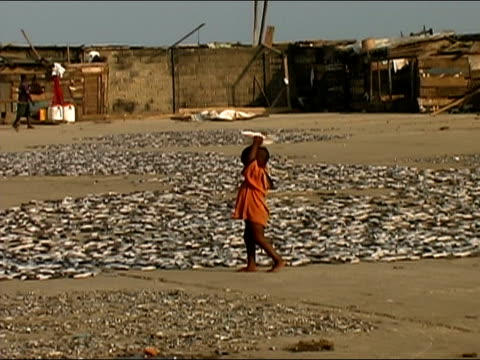 wide shot pan child walking and carrying bowl on head around fish spread out on pavement/ ghana - ghana stock videos & royalty-free footage