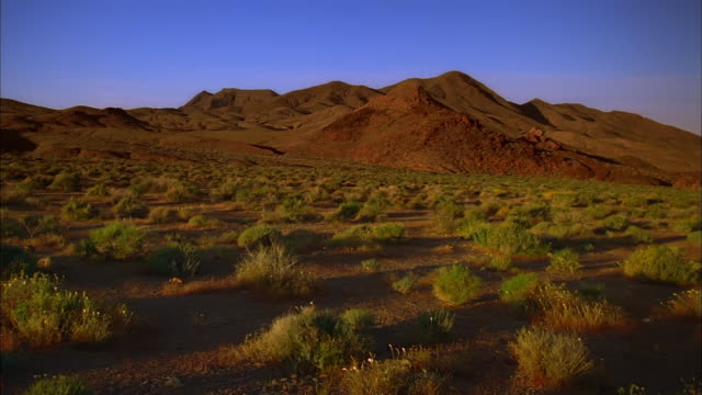 wide shot pan desert landscape with green bushes and hills in background - death valley national park stock videos & royalty-free footage
