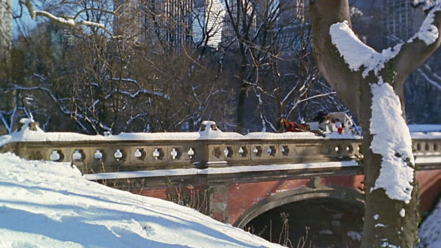 Wide shot pan horse drawn carriage crossing bridge in winter / tilt up to skyline / Central Park