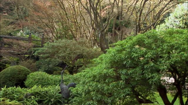 wide shot pan japanese garden with pond and bridge/ portland, oregon - portland oregon nature stock videos & royalty-free footage