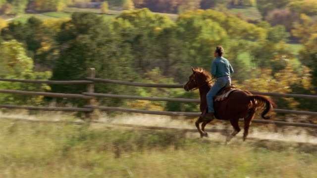 wide shot pan man riding horse in pen on ranch during autumn / trees in background / colorado - 乗馬点の映像素材/bロール