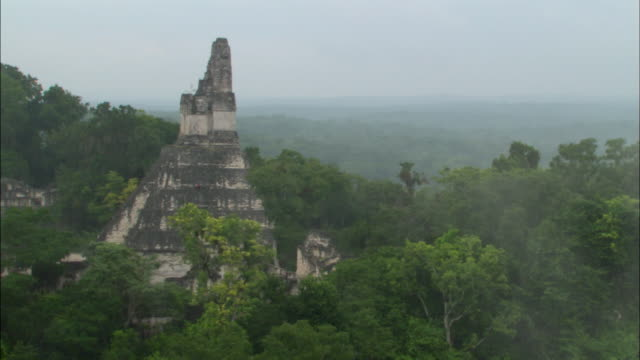 wide shot pan mist rolling over treetops and mayan ruins at great plaza / tikal, guatemala - mayan stock videos & royalty-free footage