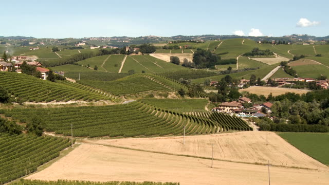 wide shot pan of hills covered by green vineyards and wine production facilities in summer on a hot and sunny day - piemonte video stock e b–roll