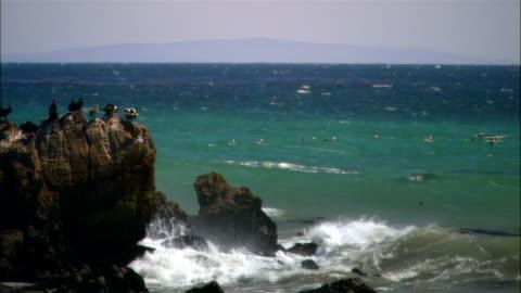 vidéos et rushes de wide shot pan pelicans in flight over ocean/ malibu, california - océan pacifique nord