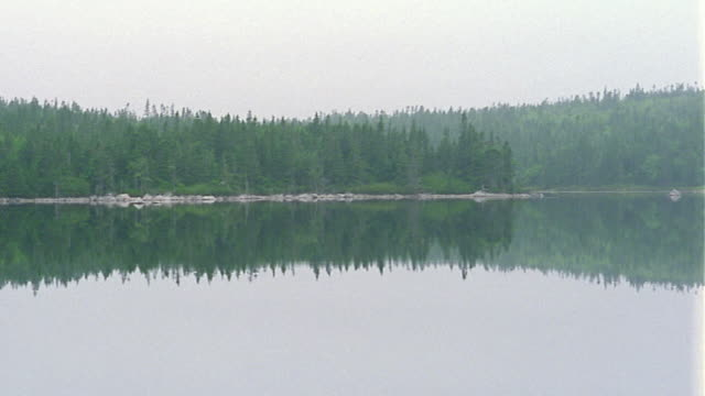 Wide shot pan reflection of forest of pine trees in mountain lake / Nova Scotia, Canada