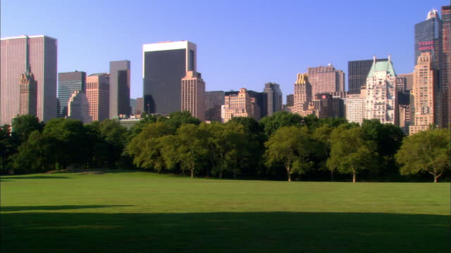 wide shot pan sheeps meadow in central park with skyline in background / nyc - sheep meadow central park stock videos and b-roll footage