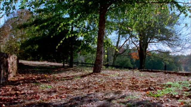 Wide shot pan terraced wall, trees, and fence on grounds at Colle/ Charlottesville, Virginia