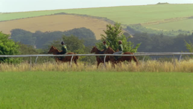 wide shot pan three jockeys riding horses on country track/ berkshire, england - erbivoro video stock e b–roll