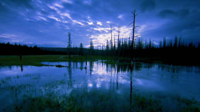stockvideo's en b-roll-footage met wide shot pan time lapse clouds moving over lake at twilight with fire-damaged trees in silhouette along shore - yellowstone national park