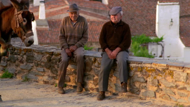 wide shot pan two senior men sit on wall by road and other man stands next to donkey / monsaraz, portugal - traditionally portuguese stock videos & royalty-free footage