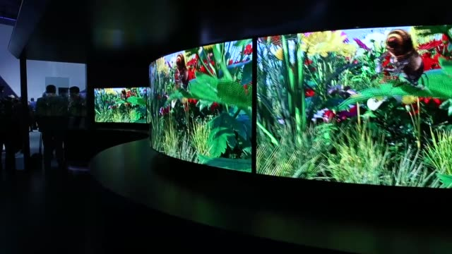 wide shot, panasonic tv's on display. general views of the 2014 international consumer electronics show in las vegas, nevada. ces, the world's... - liquid crystal display stock videos & royalty-free footage