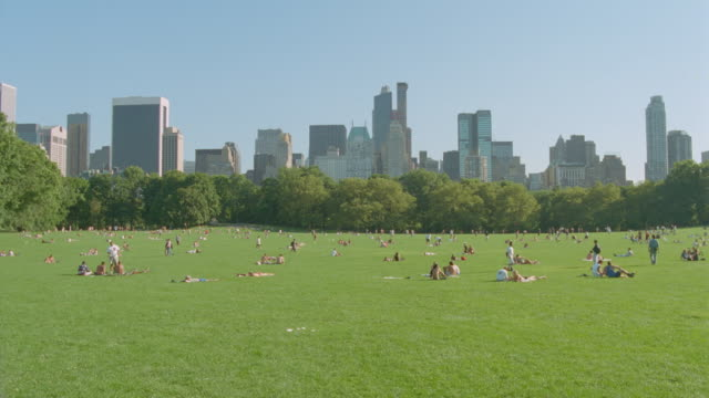 wide shot people on green field in Central Park / buildings in background / NYC