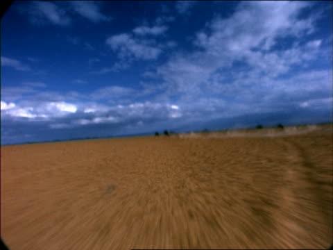 wide shot point of view of 4 wildebeests running across desert plain / africa - pflanzenfressend stock-videos und b-roll-filmmaterial