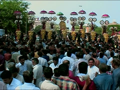 wide shot row of men holding parasols over elephants' heads and dancing with pom-poms at thrissur pooram elephant festival / thrissur, kerala, india - pom pom stock videos & royalty-free footage
