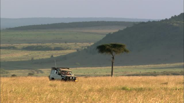 Wide shot safari vehicle driving by acacia tree +toward CAM on hot, hazy +hilly landscape/Masai Mara,Kenya